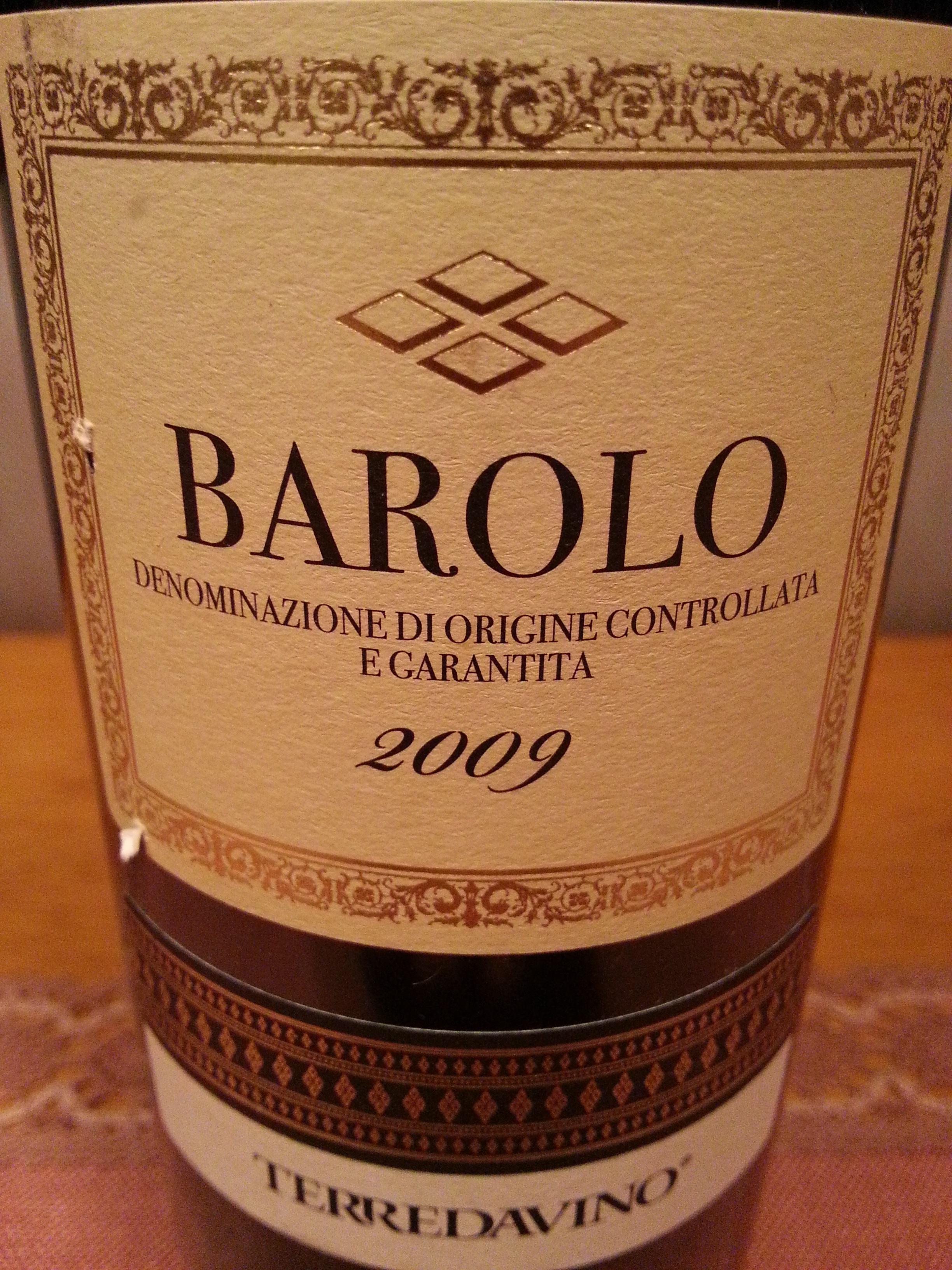 2009 Barolo | Terredavino