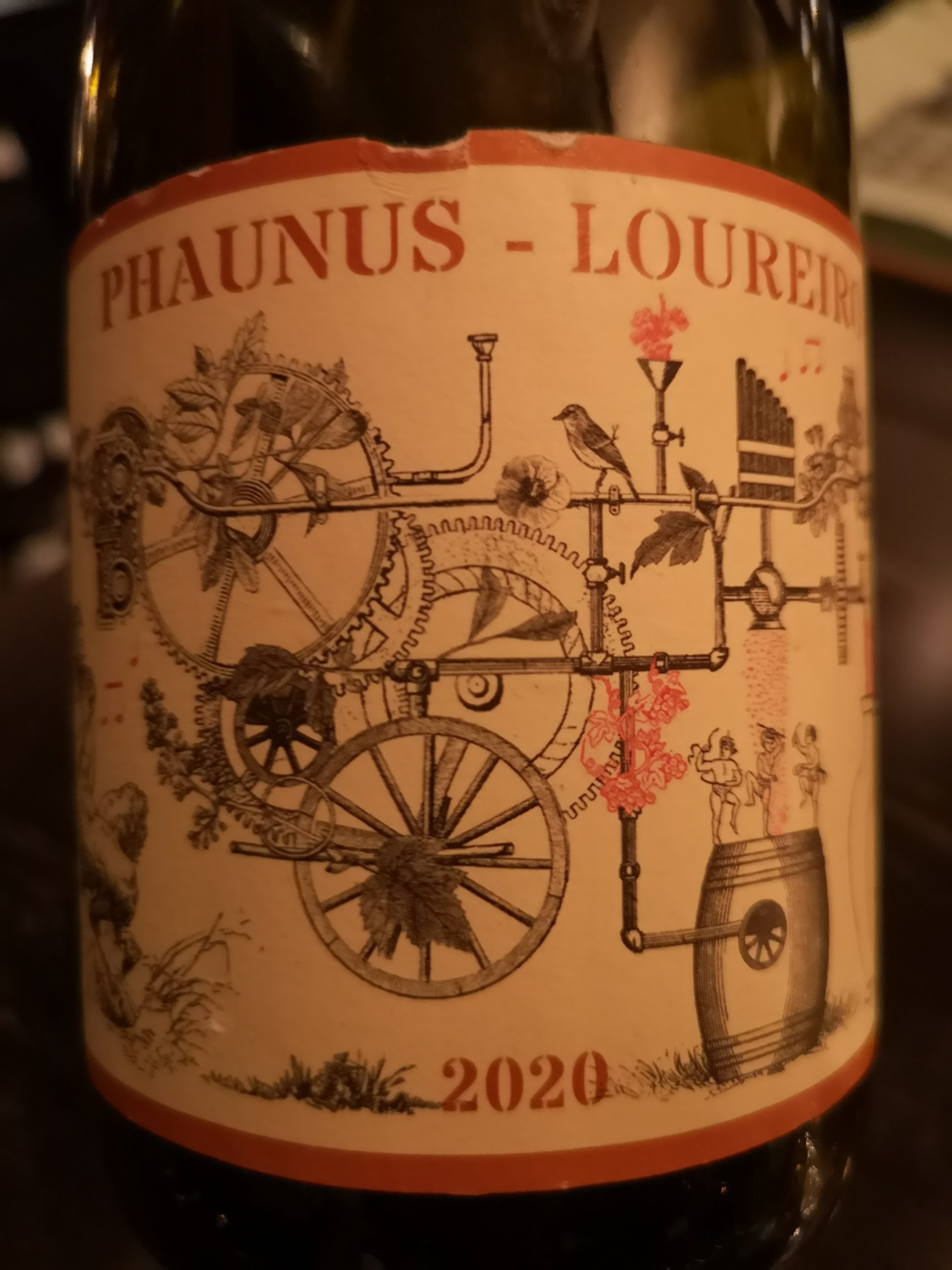 2020 Vinho Verde Amphora | Phaunus Loureiro